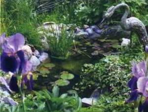 Водоем в саду - от идеи до реализации