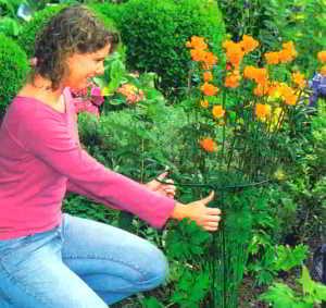 Помогайте цветам сохранять форму