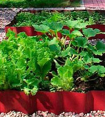 окучивание огородных растений